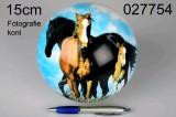 Míč Koně