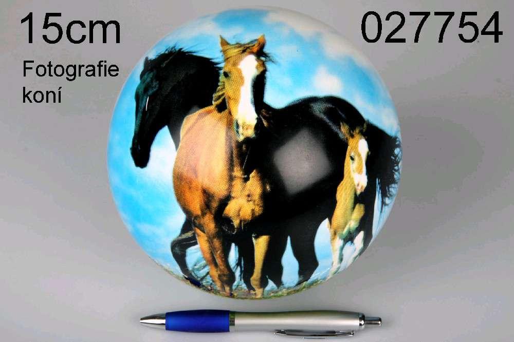 Míč 15 cm Koně