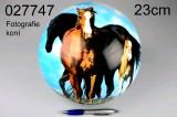 Míč 23 cm lakovaný koně