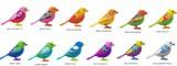DigiBirds interaktivní ptáček