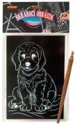 Škrábací obrázek hologram pes