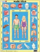 Puzzle Naše tělo 35 dílků