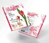 Papírové květiny růžový tulipán
