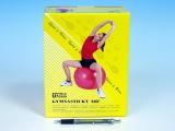 Gymnastický míč 55cm