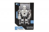 Robot RC plast
