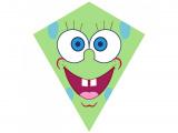 Drak nylon Obličej zelený70x60